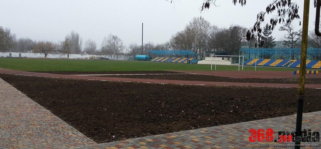 «Народный бюджет»: стадион за миллион в Беляевке