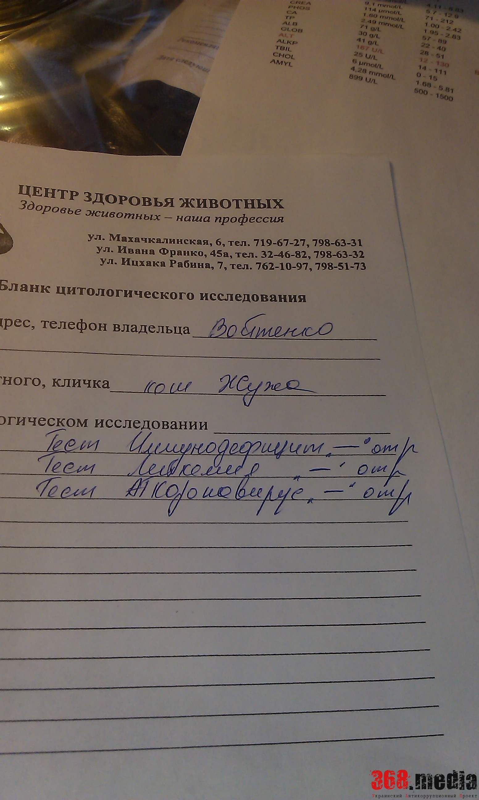 Документы клиники на Жужу. Фото: Алена Войтенко