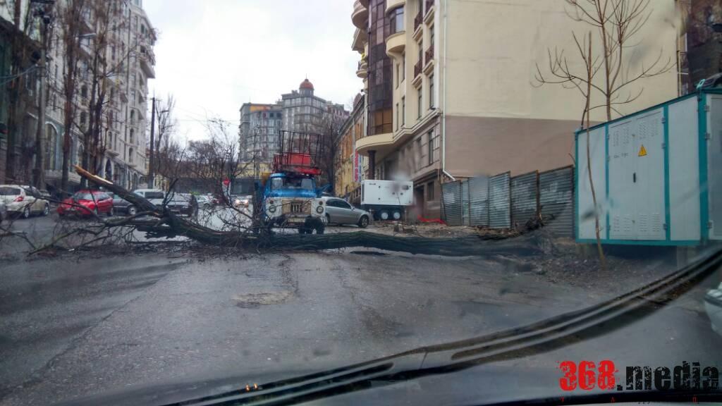 Еще один поваленный ствол. Фото: ГСЧС в Одесской области