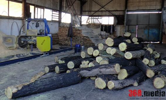 В Хмельницкой области директор лесхоза украл партию древесины на 200 тысяч гривен