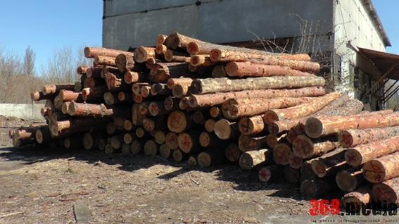 В Харьковской области мастера леса подозревают в ущербе на 230 тысяч гривен