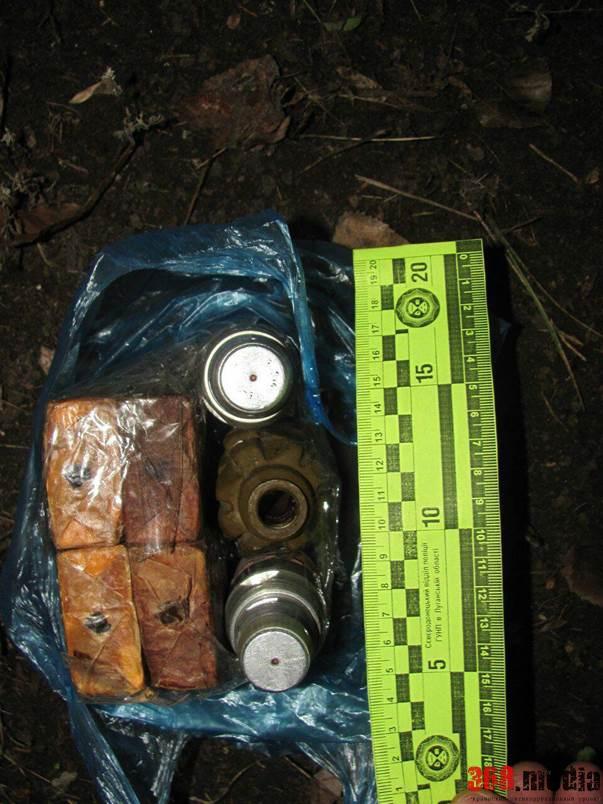 В Луганской области диверсанты пытались организовать взрыв у опоры ЛЭП