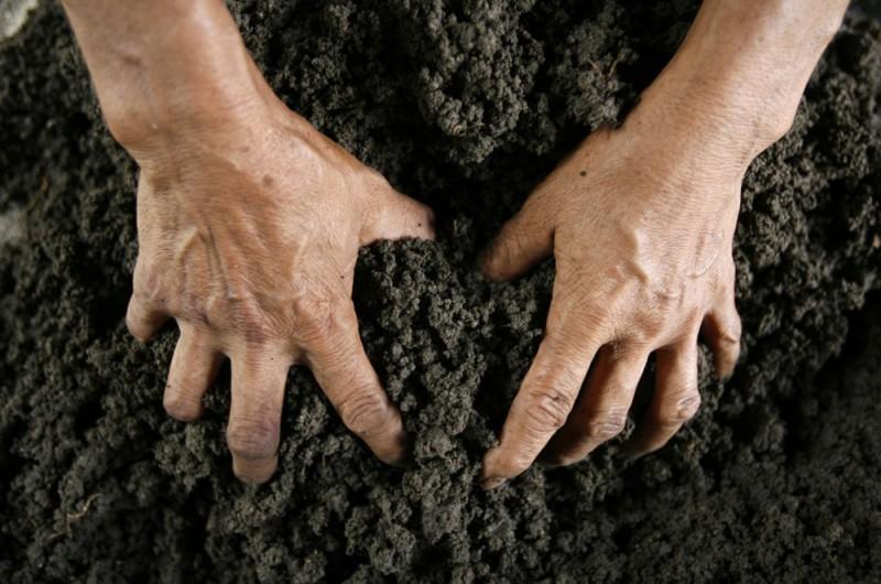 Чиновники Госгеокадастра и ГАСИ переписали земли киевской общины для перепродажи под застройку