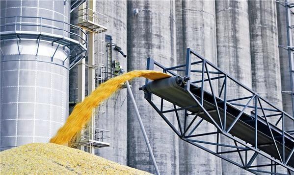 Кабмин планирует отдать частной фирме монополию по контролю сбора урожая
