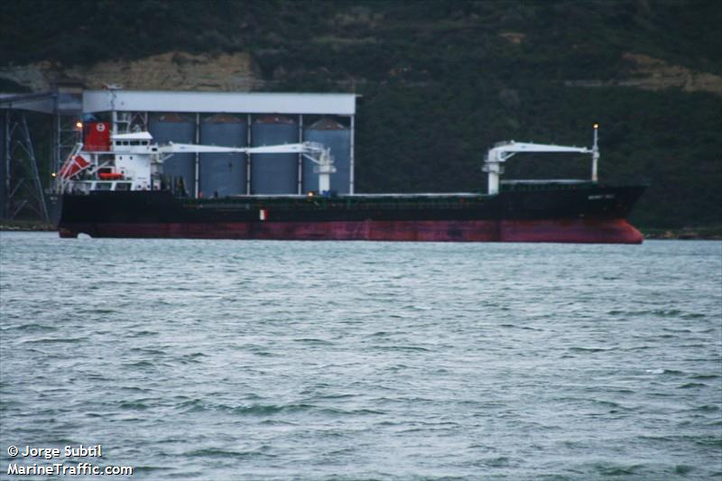 Взбунтовавшихся турок, пытавшихся угнать судно в Южном, сочли хулиганами