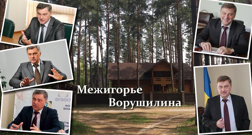 Глава Фонда гарантирования вкладов купил себе роскошный дом