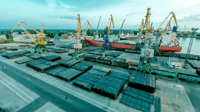 Администрацию морского порта «Ольвия» уличили в хищениях на тендерах