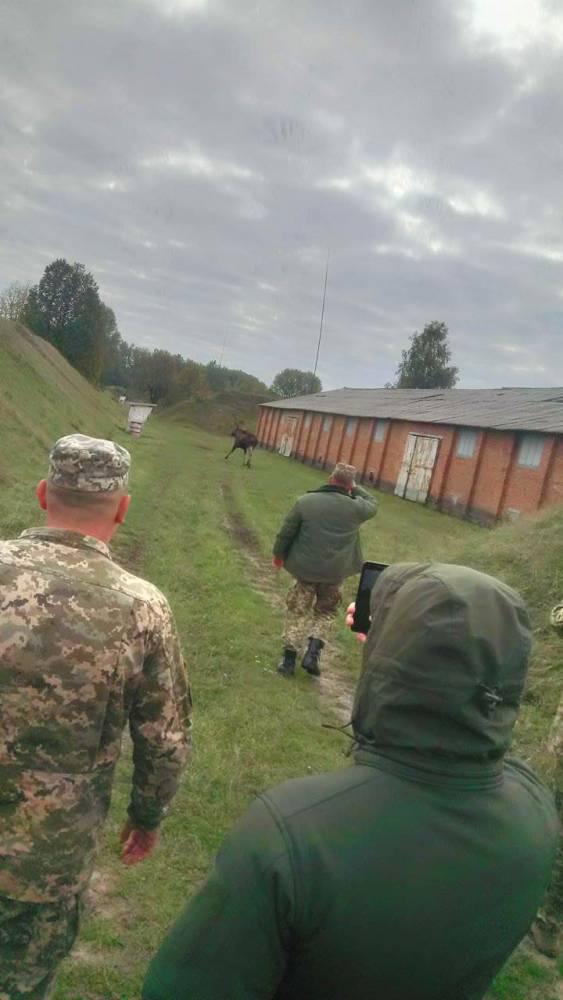 Руководство арсенала в Чуднове украло деньги на ремонте охранного периметра
