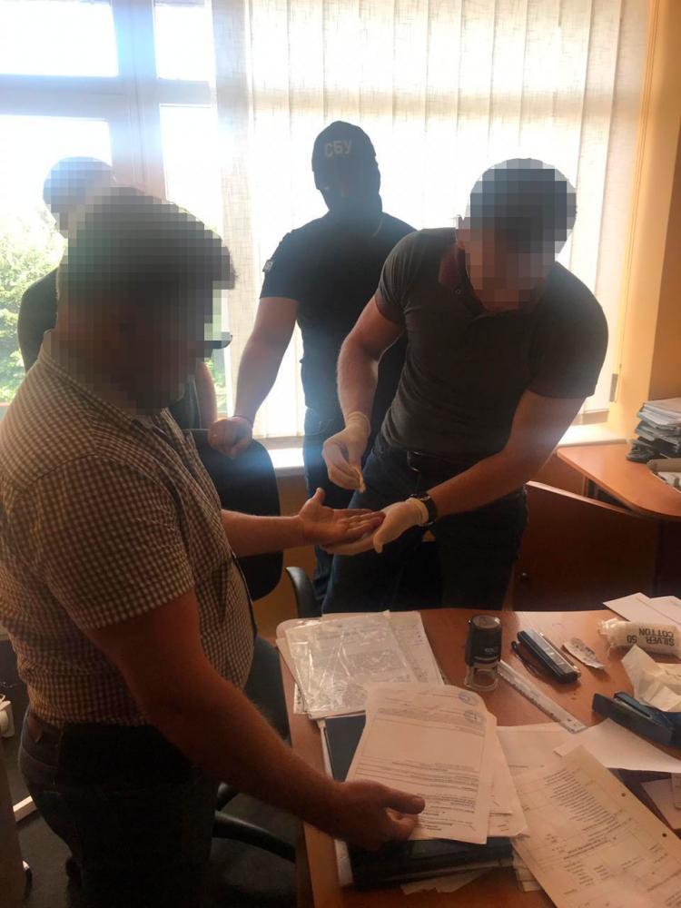 В Закарпатской области фитосанитарный инспектор наживался на экспортерах