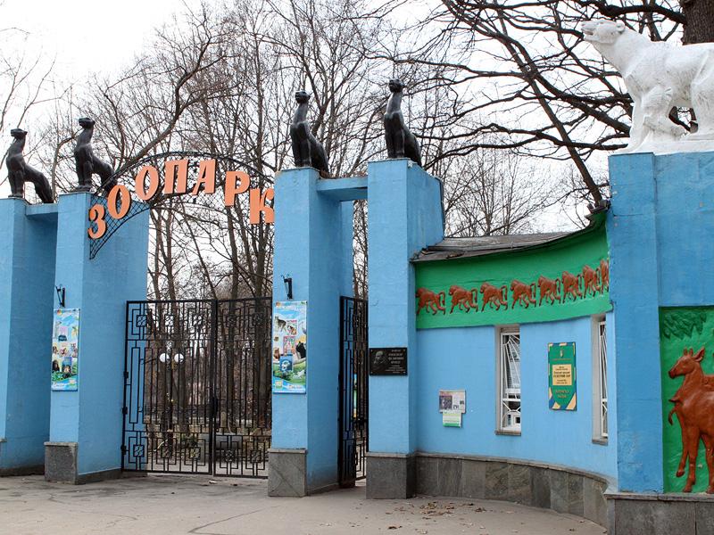 Харьковский зоопарк закупает виноград по баснословным ценам