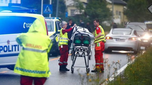 В Норвегии мужчина в униформе открыл стрельбу в мечети