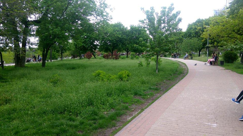 «Киевзеленстрой» поручил строительство парка за 60 млн гривен фирме своего замдиректора