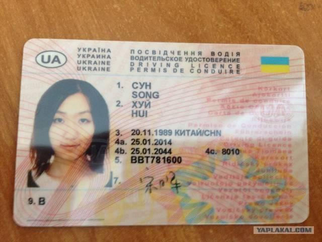 В Украине появятся электронные водительские права