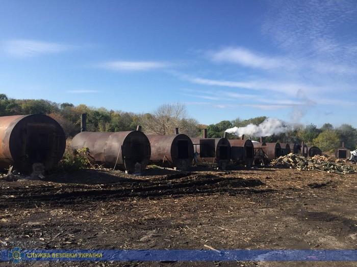 Угрожал экологии: в Харьковской области обнаружили нелегального углежога