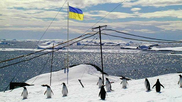 Кабмин выделил 252 млн гривен на судно для исследования Антарктиды