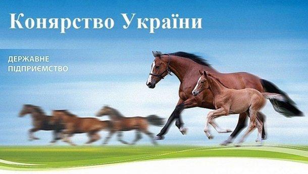 «Коневодство Украины» оказалось убыточным и недополучило 70 млн гривен