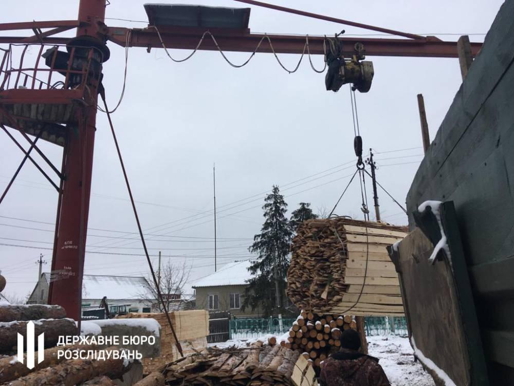 Житомирские таможенники помогали чиновникам Гослесагенства с контрабандой древесины