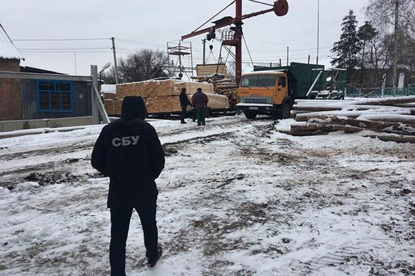 Харьковские чиновники наворовали леса на 5,5 млн гривен