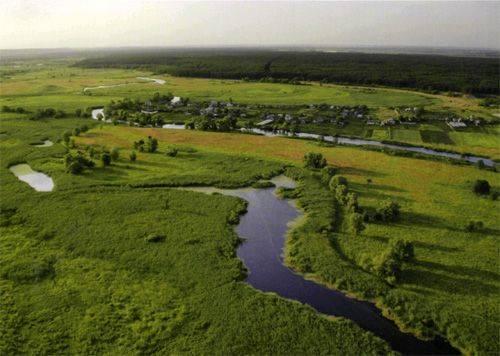 Экс-чиновник ответит за захват земли в природном парке «Гомольшанские леса»