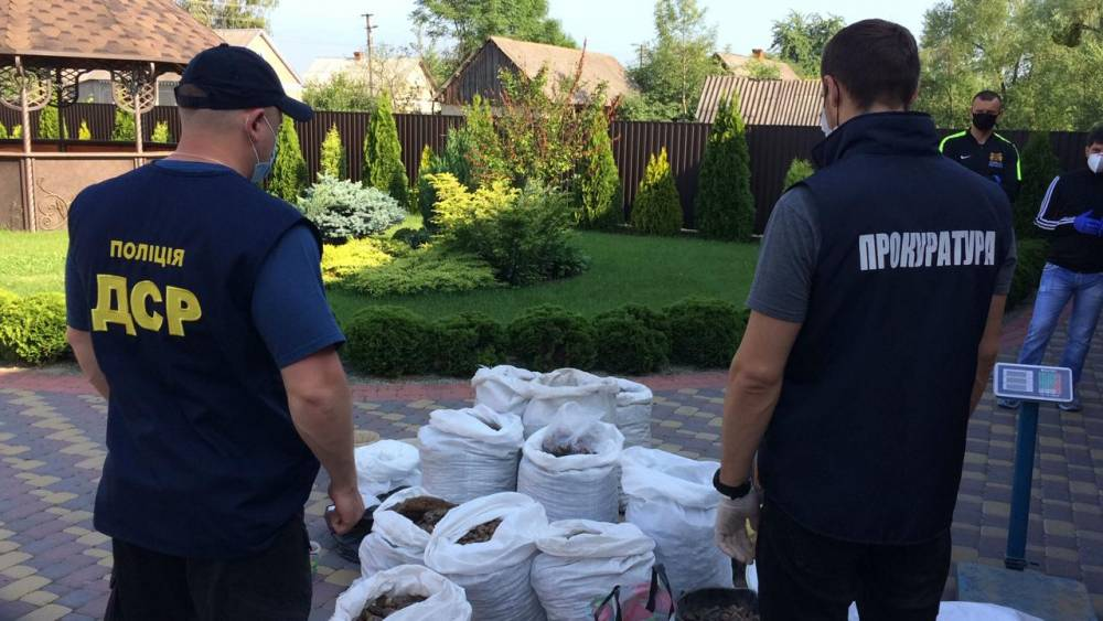 В Ровенской области обнаружили 858 кг янтаря стоимостью более 30 млн гривен