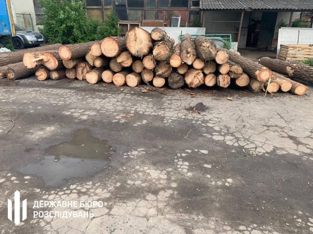 Работников Рогатинского лесхоза подозревают в нанесении ущерба на 1,9 млн гривен