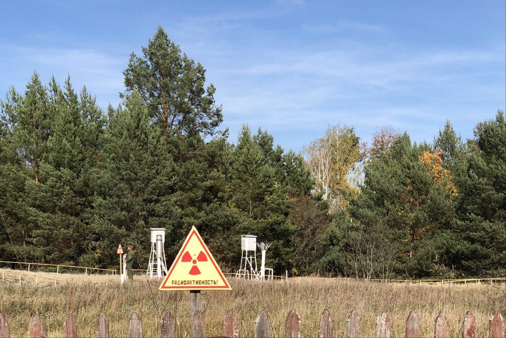 Прокуратура вернула в собственность государства незаконно перерегистрированный участок в зоне ЧАЭС