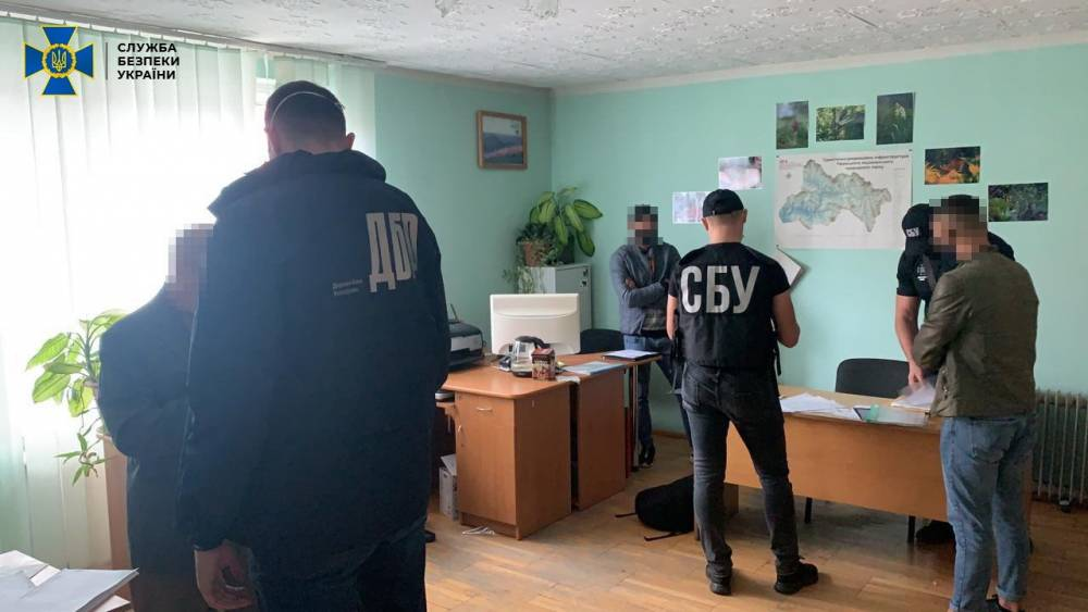 На Закарпатье в двух государственных лесхозах нелегально вырубили ценной древесины на более 3,5 млн гривен