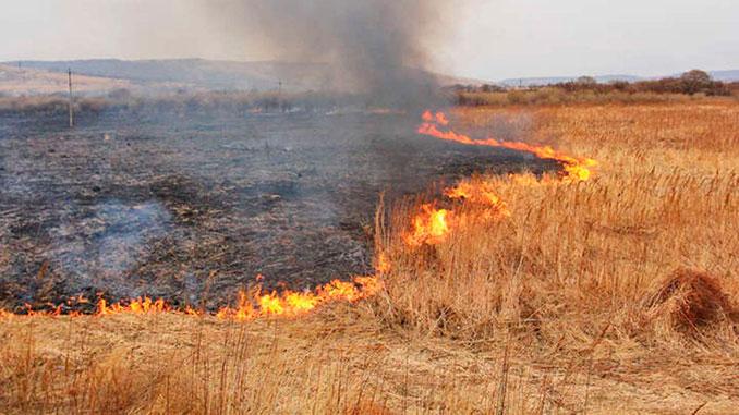 Верховная Рада поддержала увеличение штрафов за ущерб окружающей среде