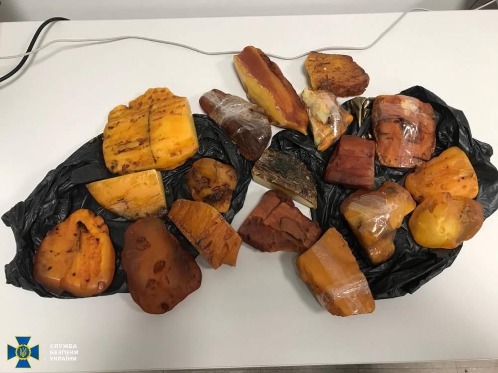Жители Ровно организовали контрабанду уникального янтаря в одну из арабских стран