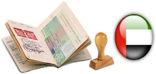 Столичное предприятие, предоставляющее услуги по получению виз, уклонилось от уплаты 56 млн гривен налогов