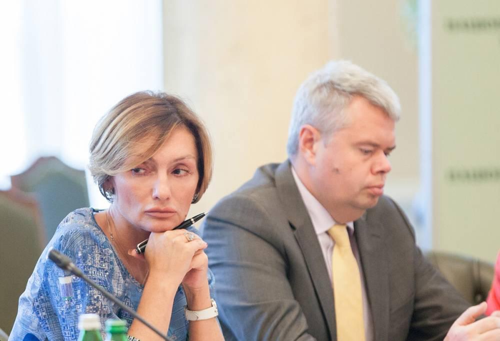 Рожкова и Сологуб подали иски к Совету НБУ