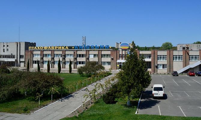 Суд по требованию НБУ разблокировал аукцион по продаже имущества птицефабрики «Киевская»