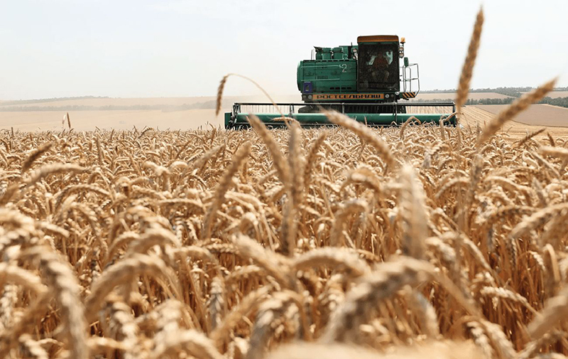 Фермеры требуют продления моратория на госпроверки