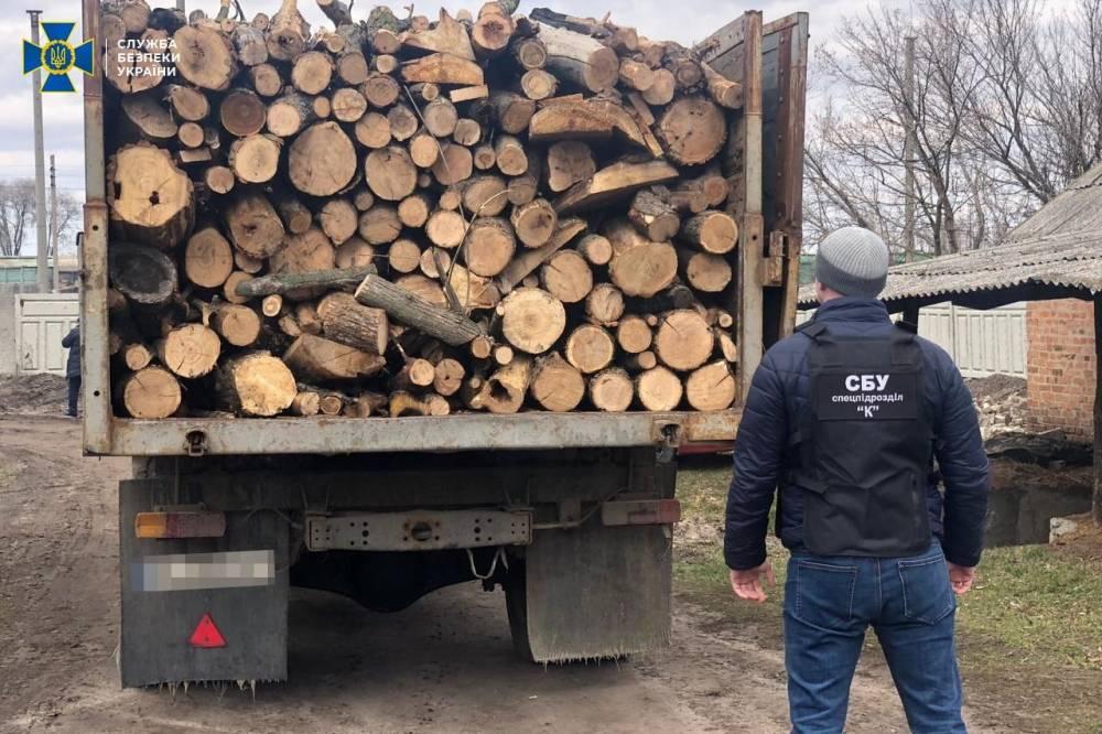 В Днепре чиновник «Укрзализныци» незаконно торговал древесиной