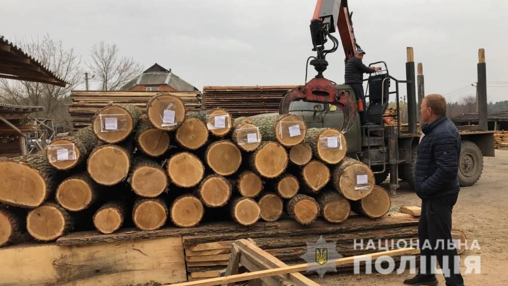 В Винницкой области чиновники лесхозов попались на воровстве древесины