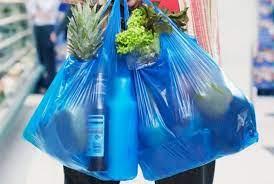 Парламент ввел запрет на пластиковые пакеты