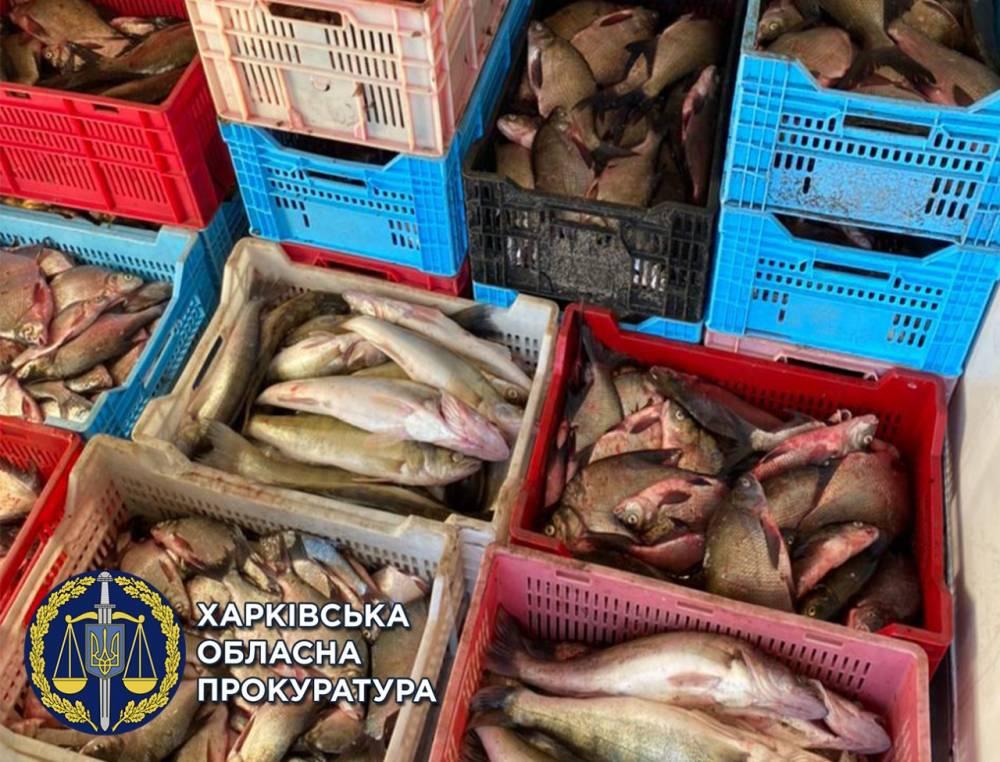 В Харьковской области закрыли крупный бизнес браконьеров
